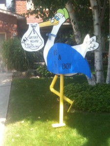 Stork Lawn Sign Rentals Birthday Signs